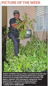 Ganja Garden - Female Police